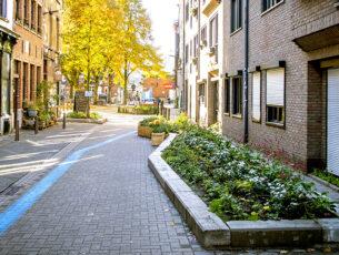 frederikbeyens_groene_straten-12